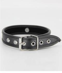B-COL11BLK Padded Black Collar